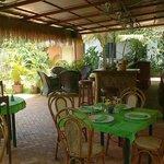 Foto de Tropical Garden