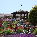 Gazebo and Garden