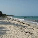 Beach at Sheshe