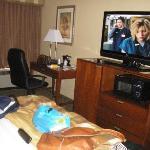 TV (very nice!)