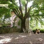 The upper courtyard, under a 1,000-year-old linden tree