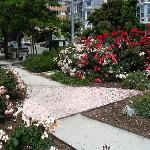 America's first Pink Triangle Memorial Park remembering homosexuals pursecuted during WWII