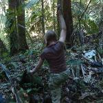 Our daughter hiking in the rainforest adjacent to the bed and breakfast