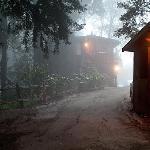 Misty Big Sur Morning