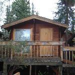 Denali Cabin