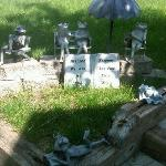 Sun Bathing Frog Family - Lawn Decorations