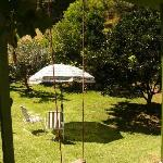 Garden from Garden Unit