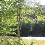 the river near the cabin