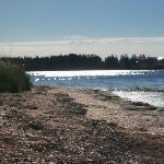 La plage du motel Sunny Isle