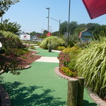 Long Neck Miniature Golf
