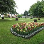 Sedgefield Village green