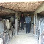 Auntsfield historic cellar