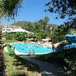2ème piscine et jardin