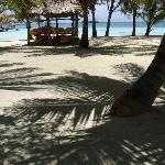Beautiful white sand and shady palms