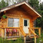 Foto de Denali Highway Cabins