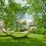 Our signature hammocks on the East Lawn