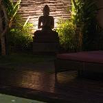 Private villa garden