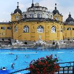 The Széchenyi Thermal Baths (27531618)