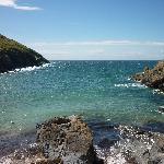 Fenella beach view
