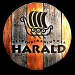 Viking restaurant Harald, Aurakatu 3