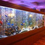Sealife Family Resort Foto