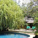 TC - piscina