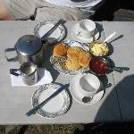 The cream tea - must try!