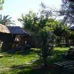 BUNGALOW PALM TREE VILLAS