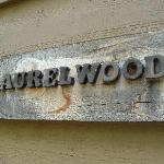 Laurelwood is my favorite cabin!