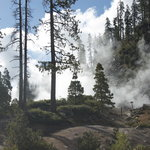 Devil's Kitchen Geothermal area near Drakesbad