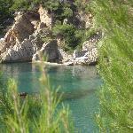Photo of La Palmeraie des Calanques