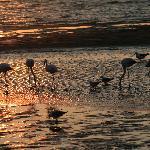 Photo de Lagoon Loge