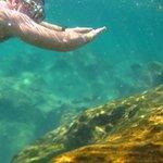 Snorkelling along in Yal Ku, awsome experience