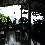 Photo de Bocas Island Lodge