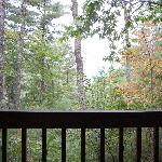 another view from cabin 2