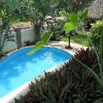 Foto de Hotel Villas Sayulita