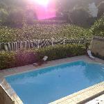 Blick auf den Pool und die Weinberge
