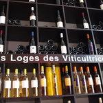 L'éloge des viticultrices