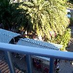 il giardino dalla ns camera