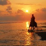 Galloping on the sunset