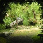 garden tunnel