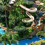 The Westin Maui Resort & Spa features lush gardens, meandering streams, breathtaking 15-20 foot