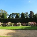 view over hedge to the Great Court yews