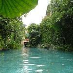 Villen-Pool