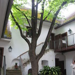 Heiligenstadter Testamenthaus Photo