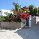 Villa Kallergi - Athena Kallergi view
