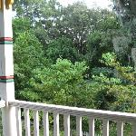 View from Lilac Room porch