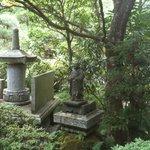瑞鳳寺 像を発見