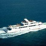 Phi Phi Cruiser at Sea