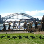 Peek Tours Sydney City Tour!